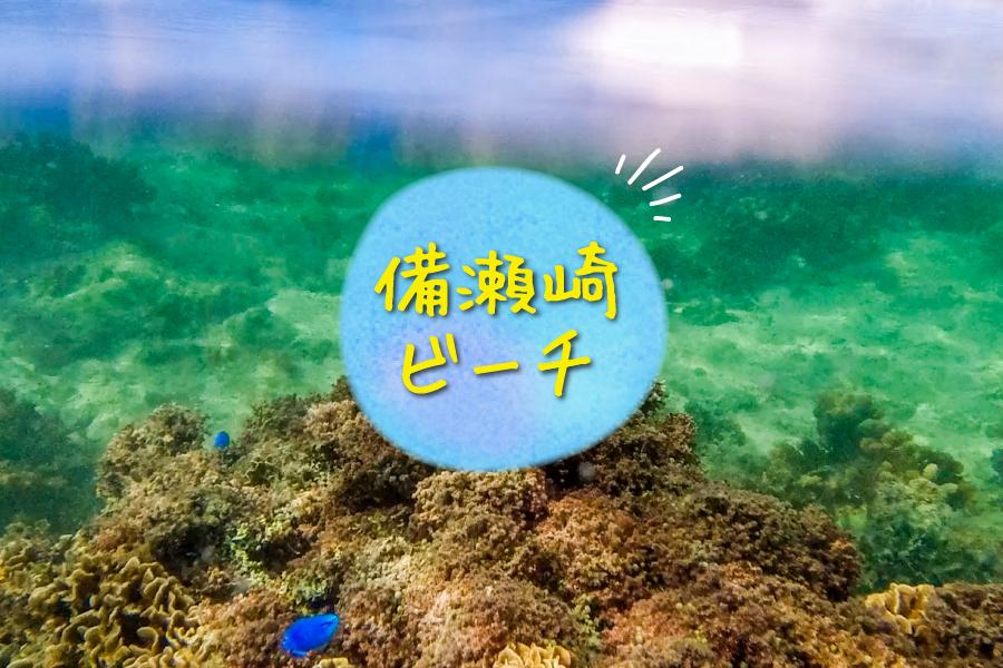 備瀬崎ビーチの海中の様子