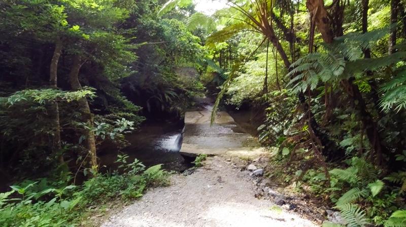 普久川滝へ行く途中の川が流れる道