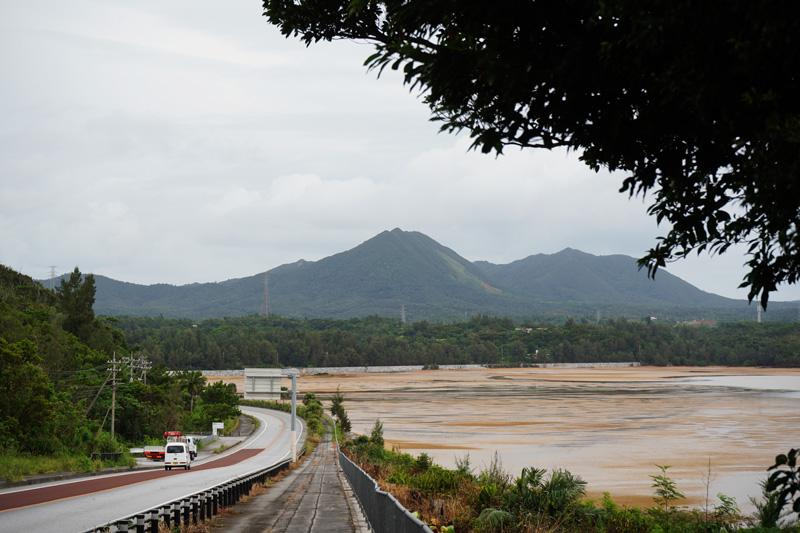 道路側から見た潟原干潟