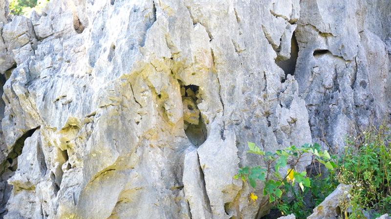 岩の中の宇宙人