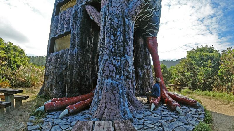 ヤンバルクイナ展望台の足