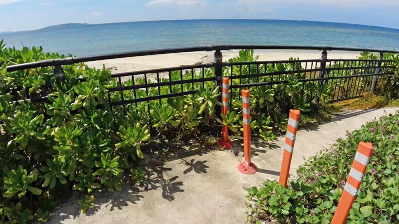 根路銘海岸のウミガメ道路侵入防止対策