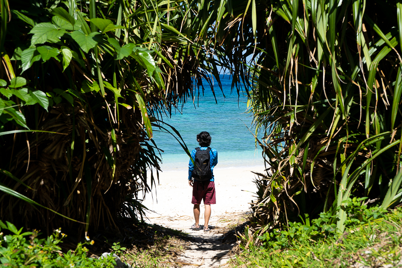 ヒジュイシビーチの草のトンネル