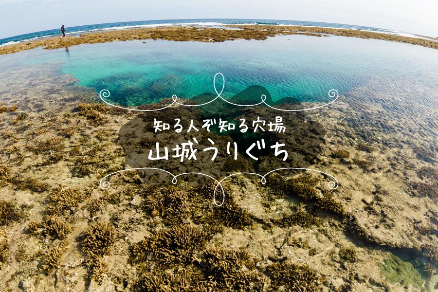 山城うりぐちの天然プールとサンゴ